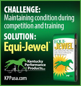 280x280-Equi-Jewel-Challenge-Solution