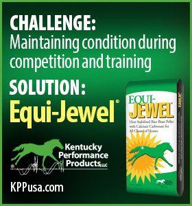 280x280-Equi-Jewel-Challenge-Solution