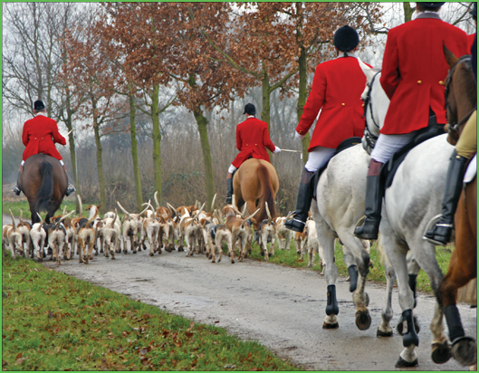 529x412-The-Feeling-You-Get-Following-The-Hounds-Foxhunt