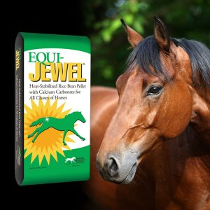 why-choose-equi-jewel