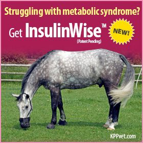 280x280-InsulinWise-1