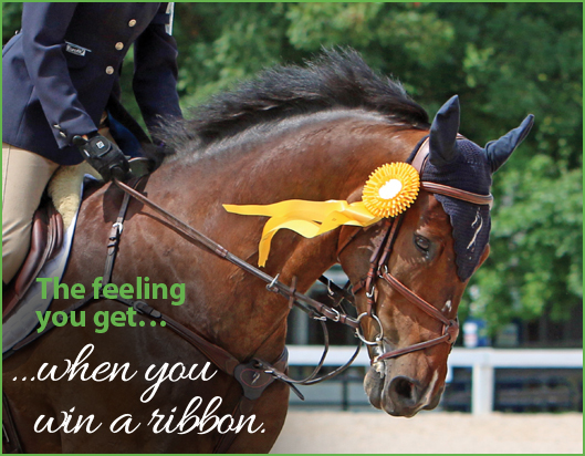 529x412-feeling-win-a-ribbon