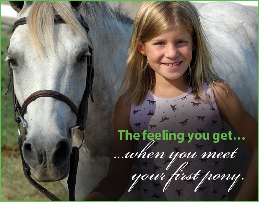 9-Feeling-When-You-meet-your-first-Pony