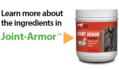 Joint-Armor-Image