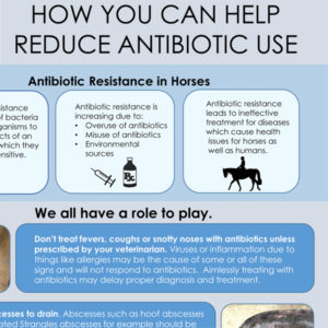 antibiotic-use-Infographic-FINAL