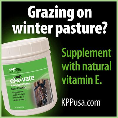 Vitamin E winter pasture