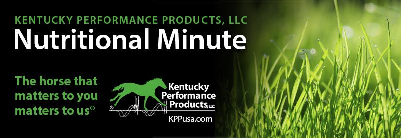 Spring Pasture Dangers