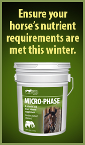 Microphase ad