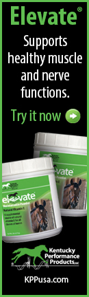 Elevate muscle ad