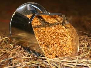 equine-horse-supplements-grain1