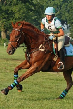 equine-horse-supplements-eventing