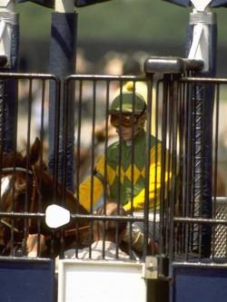 equine-horse-supplements-racing2
