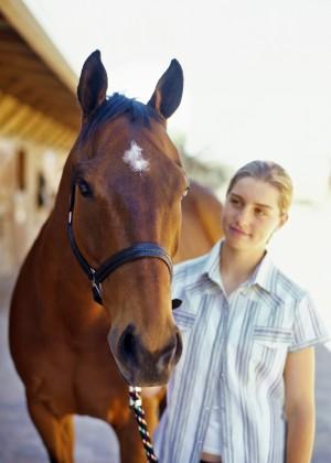 equine-horse-supplements-headshot8