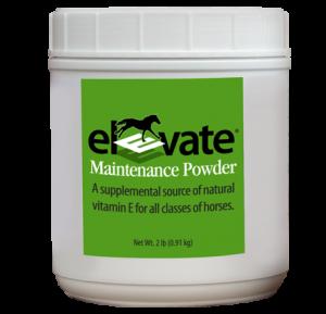 immune-antioxidants-muscle-elevatemp