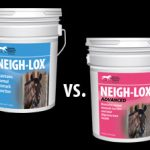 neigh-lox-neigh-lox-advanced-kentucky-performance-products