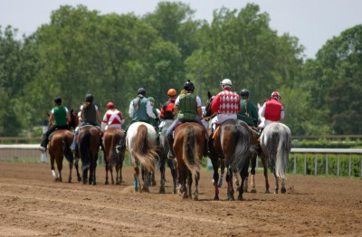 equine-horse-supplements- kentucky-performance-products-race-horse