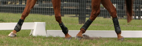 kentucky-peformance-products-joint-armor-horse-supplements