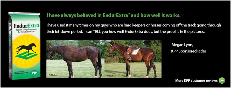EndurExtra Test