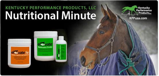 Kentucky-Performance-Products-Nov-Vitamin-E-Nut-Min