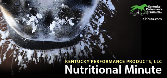 Kentucky Performance Products Feb Nut Min