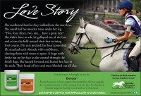 Kentucky Performance Products Love Story 2 Elevate (1) (Large)