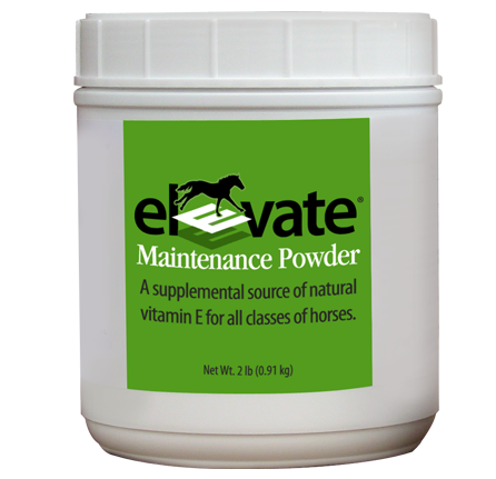 immune-antioxidants-muscle-elevatemp (2)