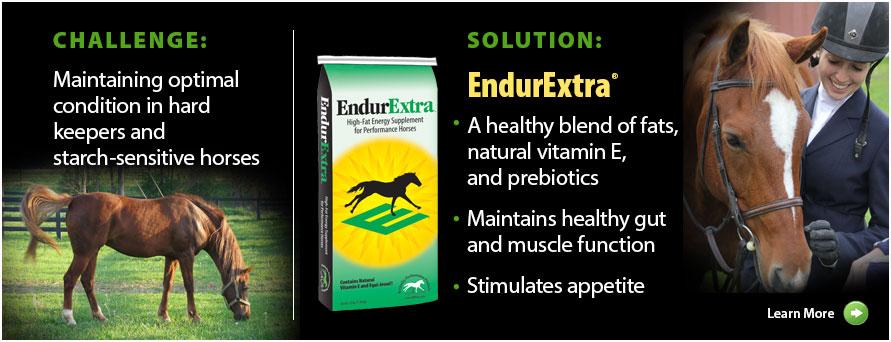 EndurExtra