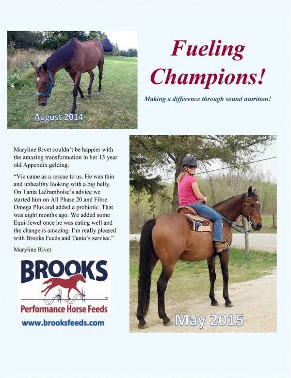 Brooks Testimonial (Large)