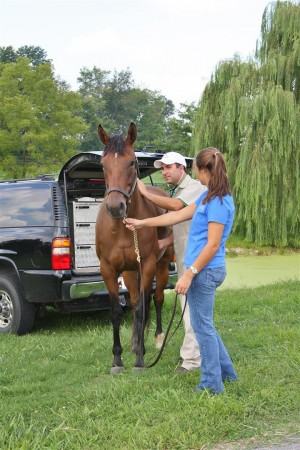 kentucky-performane-products-vet