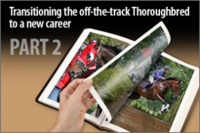 Transitioning the off-the-track Thoroughbred to a new career Part-2